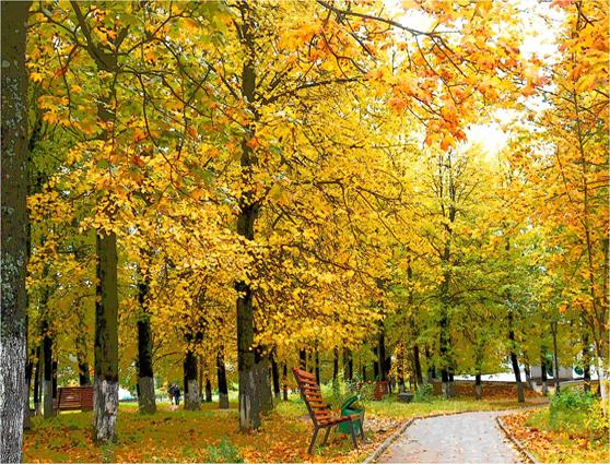 Краснохолмская осень. Праздник для детей подготовительной к школе группы