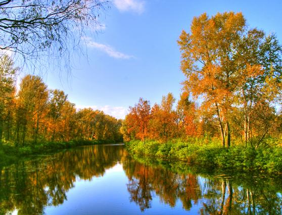 Осенняя пора. Стихи для детей