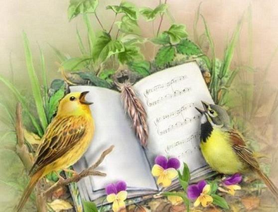 Лесной концерт. Стихи для детей