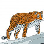 Раскраска_Леопард_Page_2